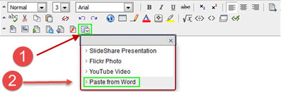 Paste to Blackboard using the Mashup button